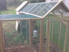 Chicken Run Extension