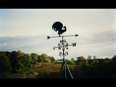 Weather Vane - Fabrication and Installation